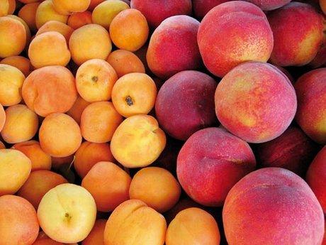 frutas hueso