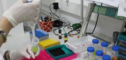 laboratorio plaguicidas