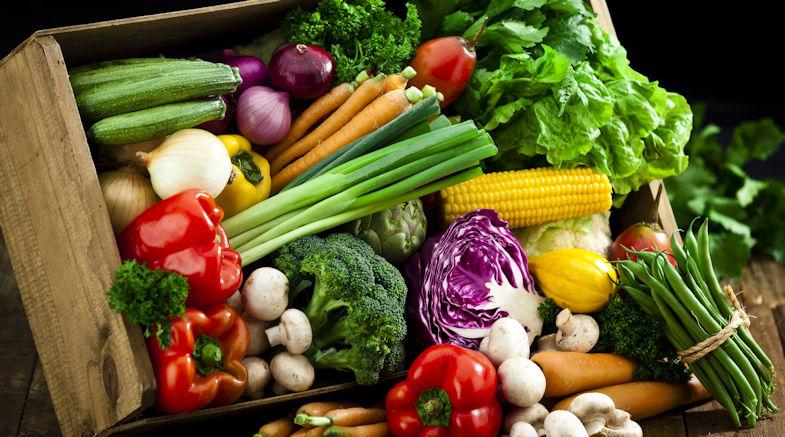 hortalizas eco 785