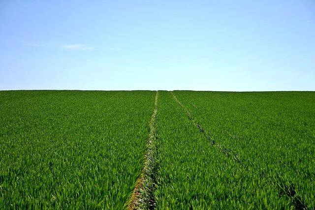 normativa de agricultura ecológica